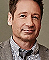 David Duchovny Online